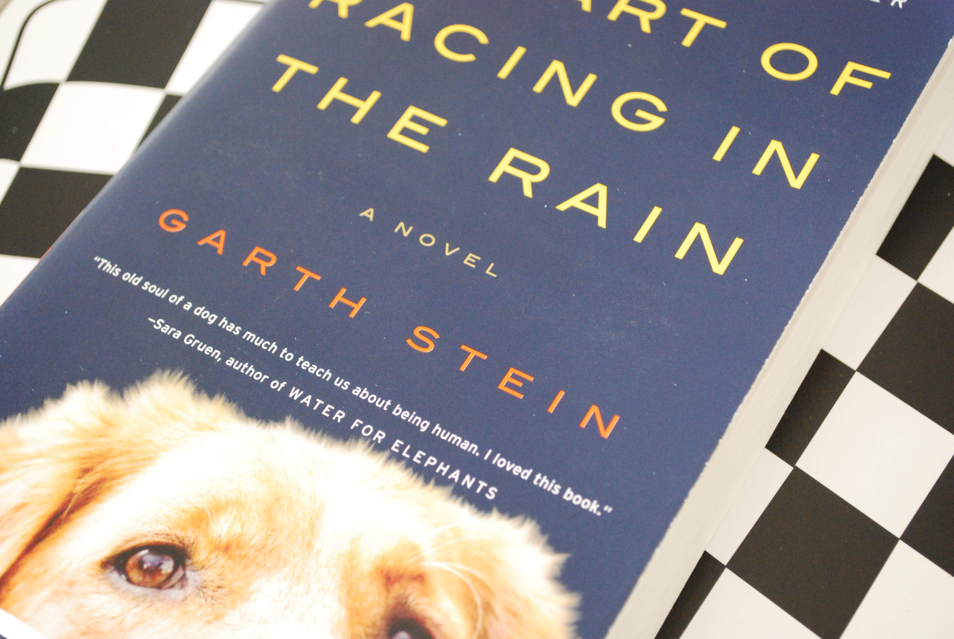 the art of racing in the rain Art of racing in the rain in a report released this week, a 12-member review  committee in the dallas-area highland park independent school.