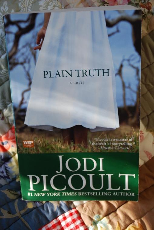 Plain Truth Jodi Picoult Quotes