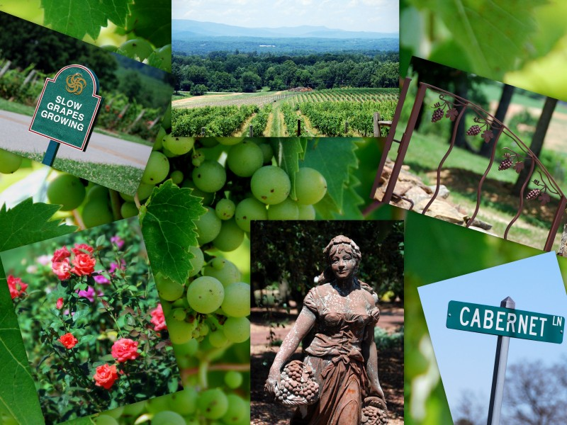 nc wineries