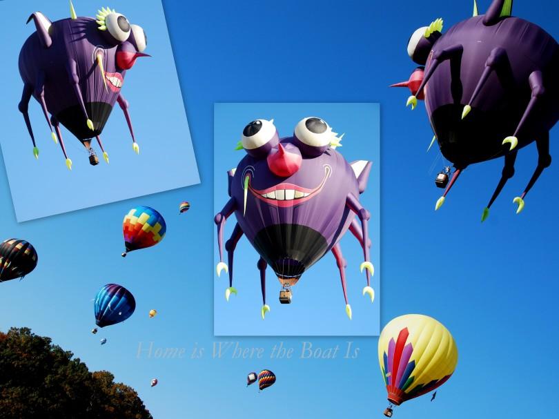 Balloon Festival  20112