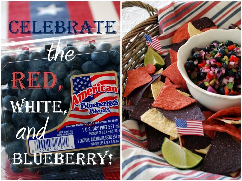 blueberry salsa_3-001