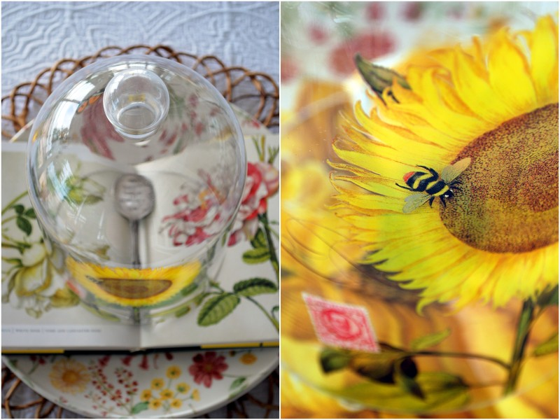 sunflower book cloche1