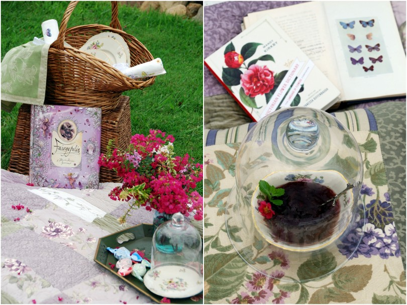 looking for flower fairies3