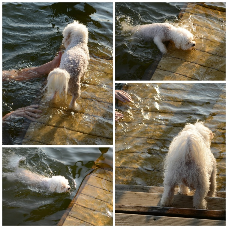 Chloe Swimming Lessons