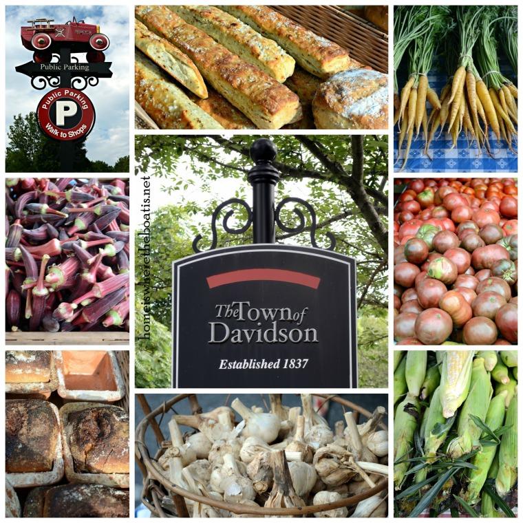 Davidson Farmers Market-001