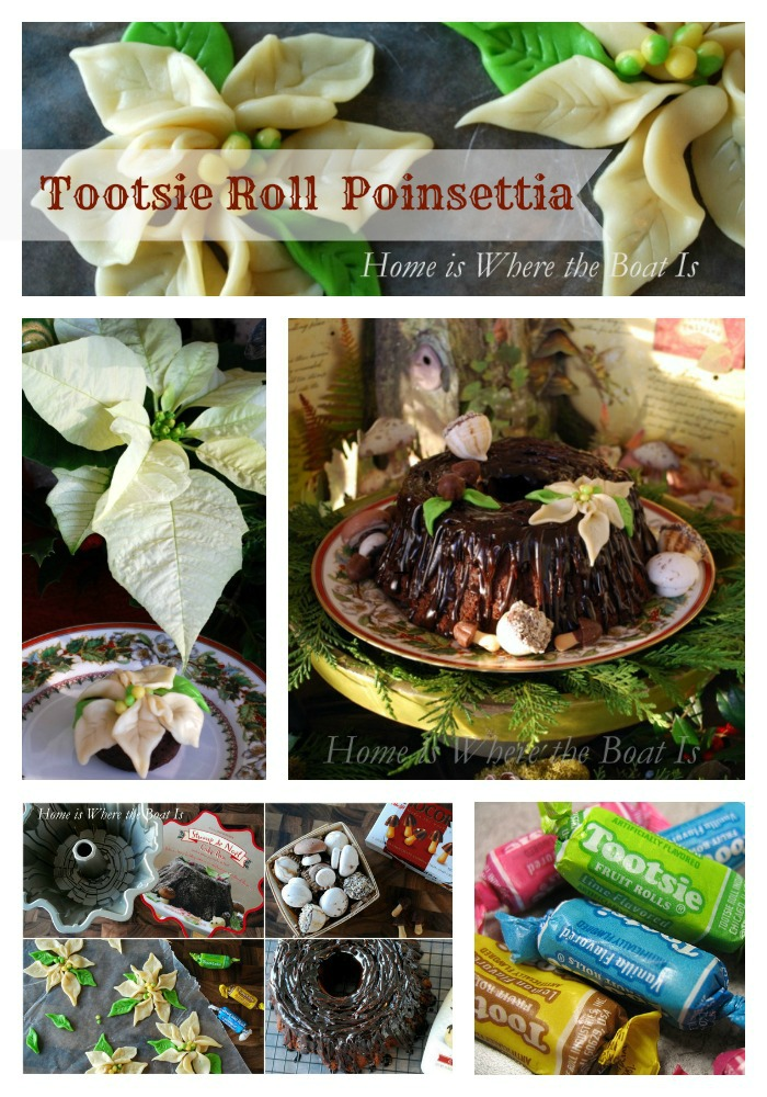 tootsie roll poinsettia