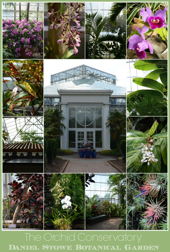 Daniel Stowe Botanical Garden Orchid Conservatory | Home is Where the Boat Is