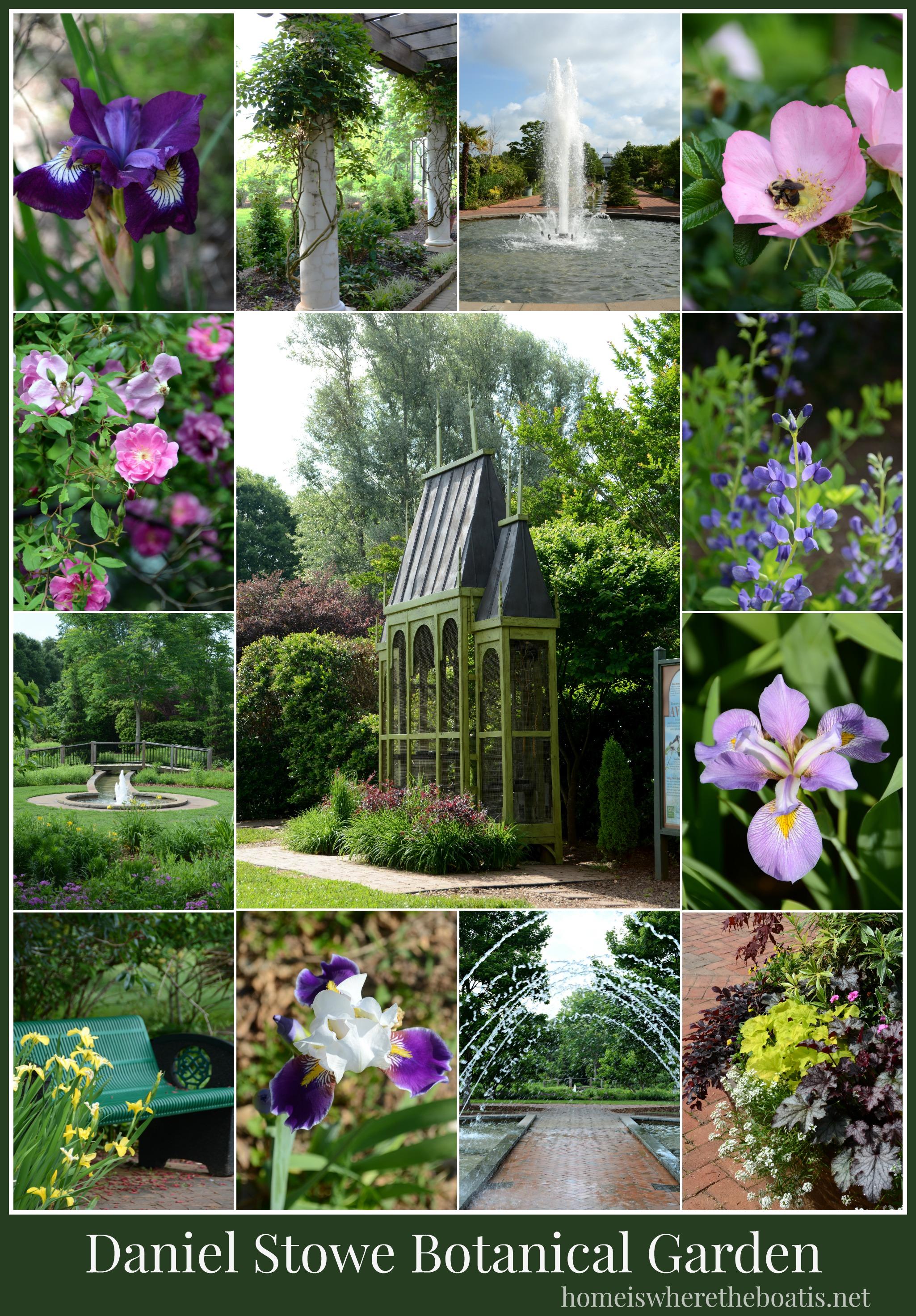 A Visit To Daniel Stowe Botanical Garden
