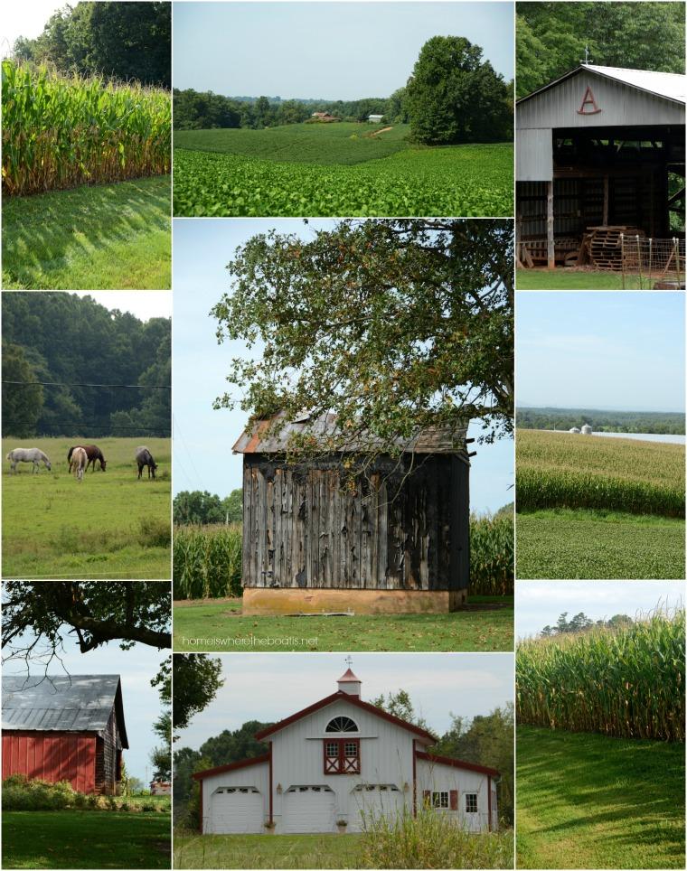 Farm Country Yadkin County NC