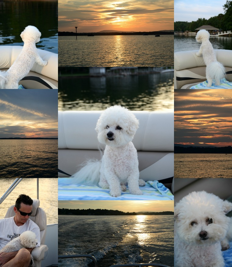 Sunset Cruise Lake Norman Chloe & Gracie