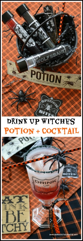 Drink Up Witches Potion & Halloween Cocktail
