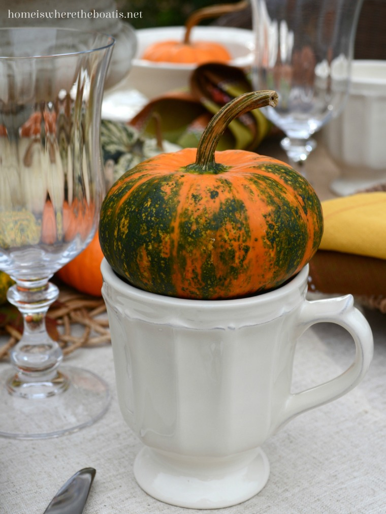At The Table Pumpkins And Pfaltzgraff Delaney Dinnerware