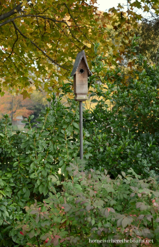 Birdhouse and The Forest Feast | ©homeiswheretheboatis.net