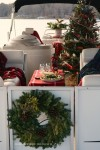 Christmas Pontoon