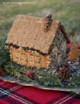 Gingerbread House Bird Feeder