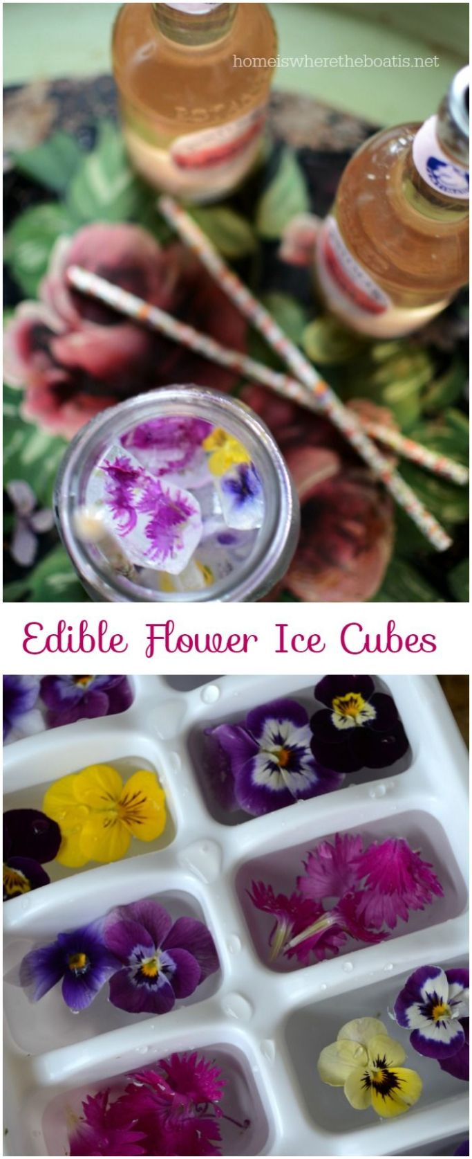 edible flower ice cubes