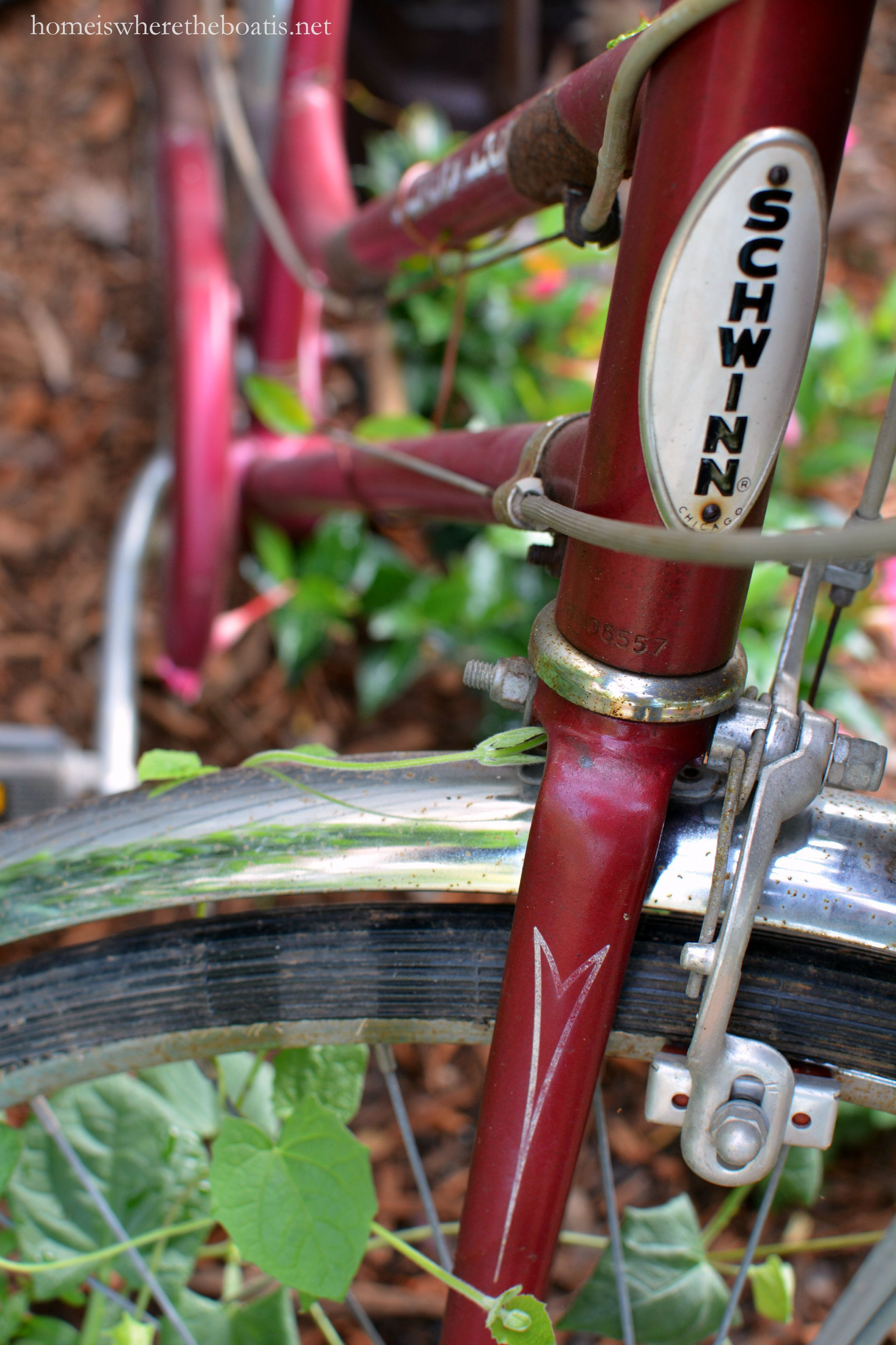 Gardening On Wheels A Bicycle Built For Planting Home