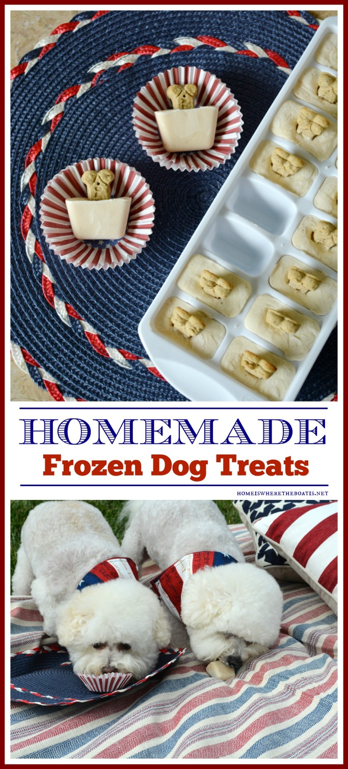 Homemade Frozen Dog Treats