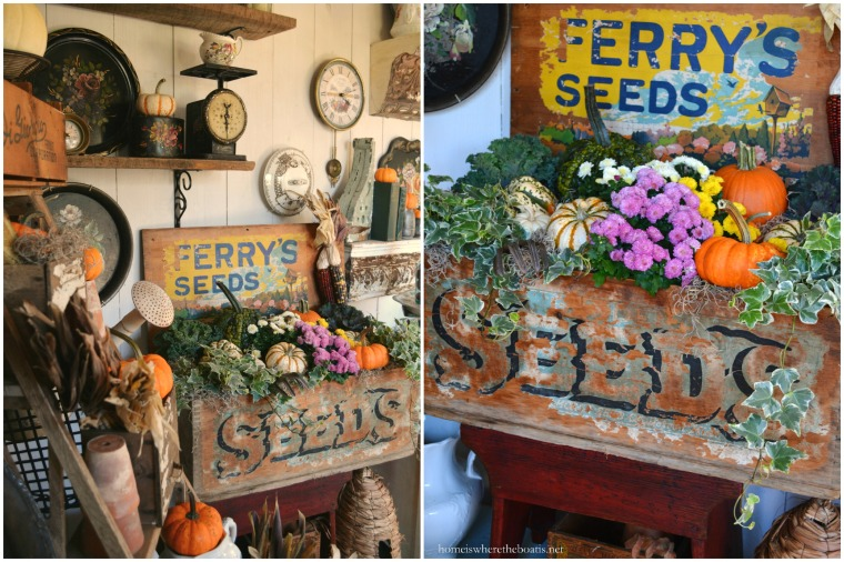 Fall in a Ferry's Seeds Box