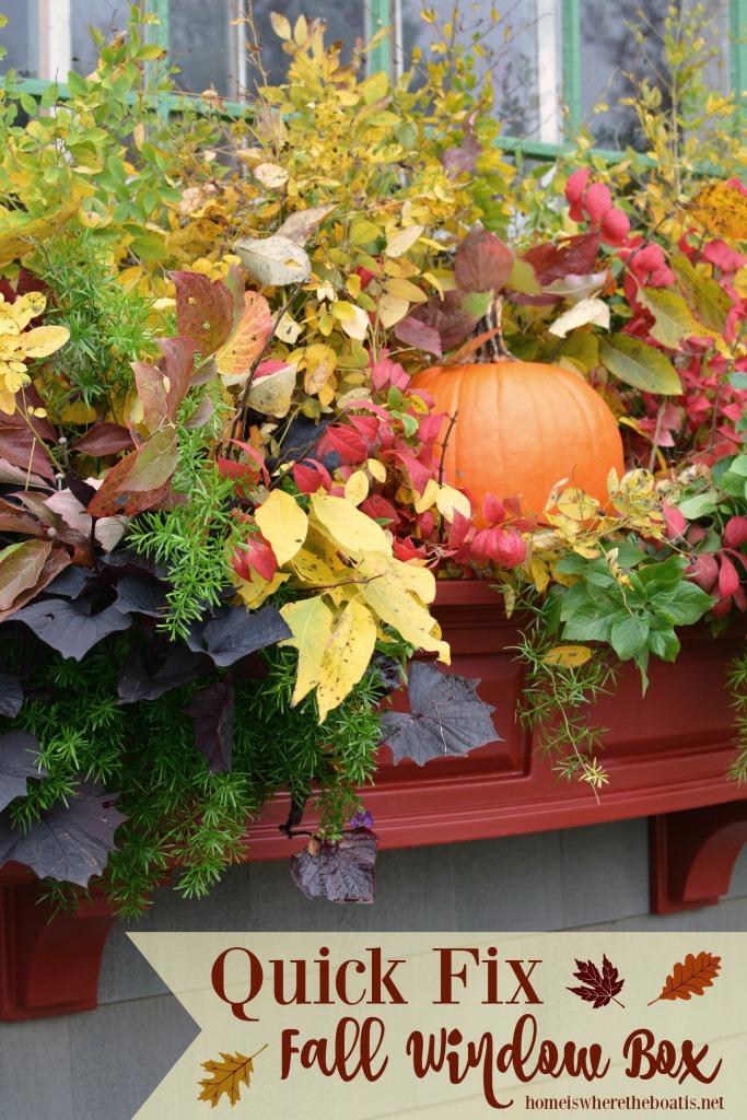 Quick Fix Fall Window Box