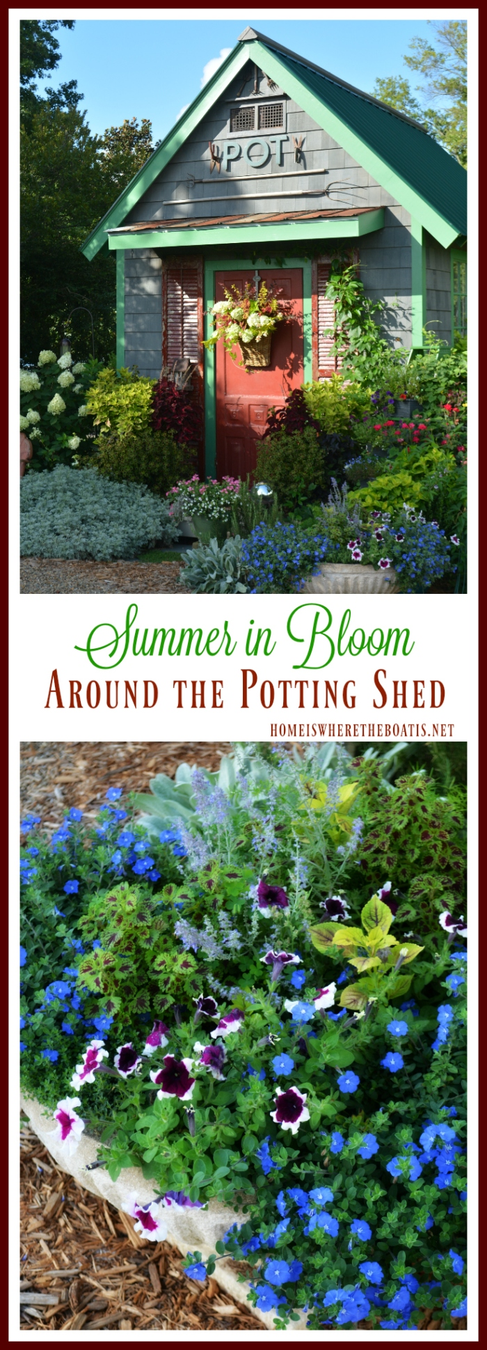 Summer in Bloom Around the Potting Shed