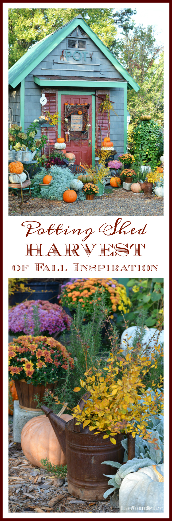 a-harvest-of-fall-inspiration-around-the-potting-shed