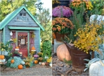 fall-around-the-potting-shed