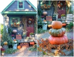 potting-shed-fall