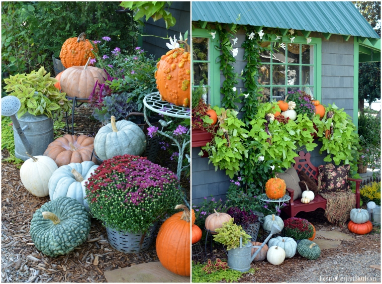 pumpkins-potting-shed