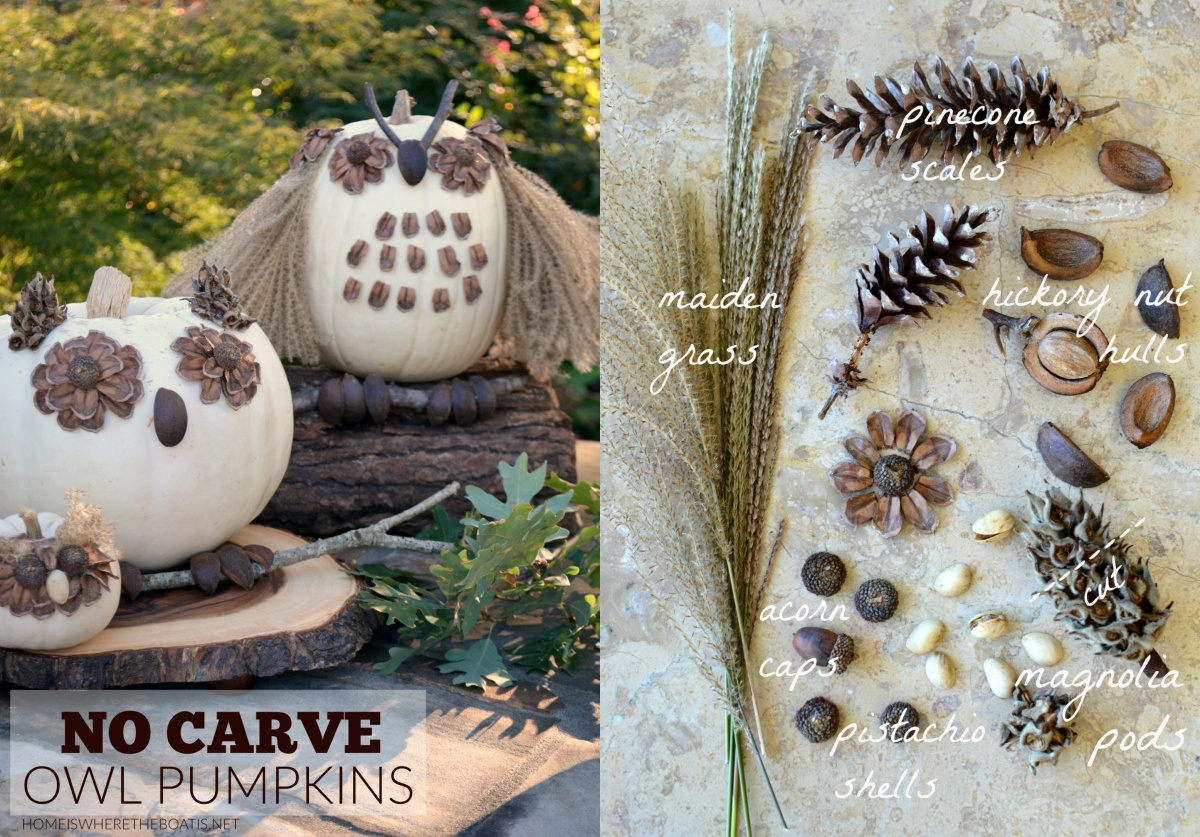 What a Hoot: No-Carve Owl Pumpkins!
