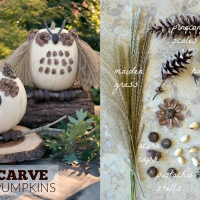 What a Hoot: No-Carve Pumpkin Owls!