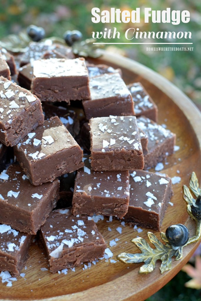 salted-fudge-with-cinnamon