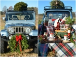 christmas-tree-tailgate-picnic