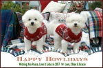 happy-howlidays
