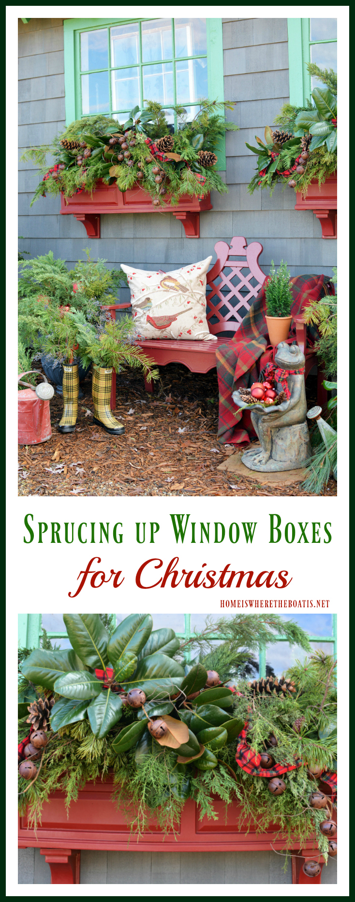 sprucing-up-window-boxes
