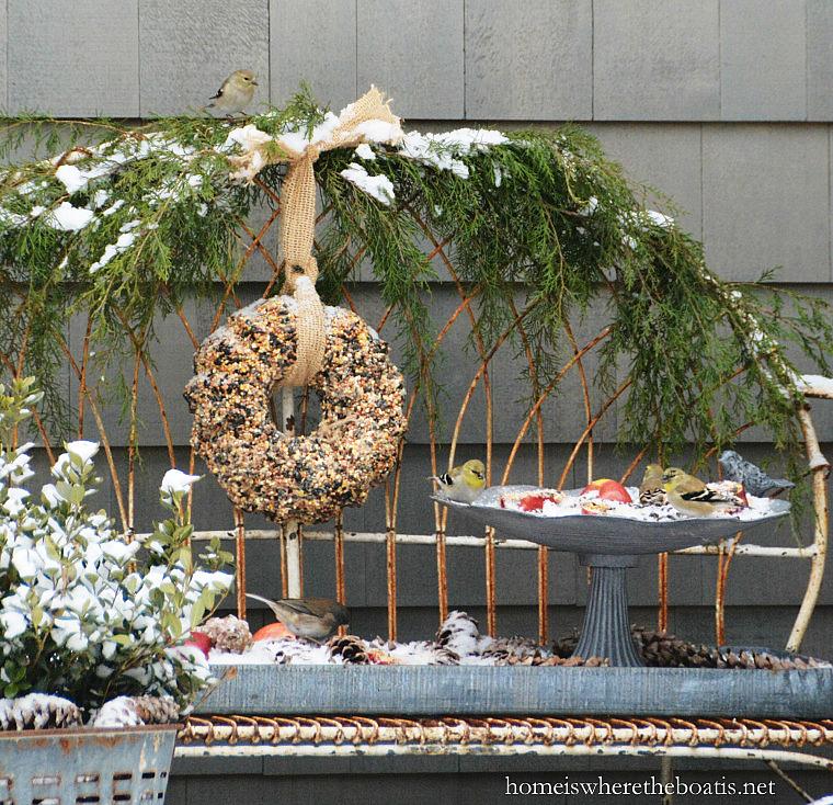 bird-seed-wreath