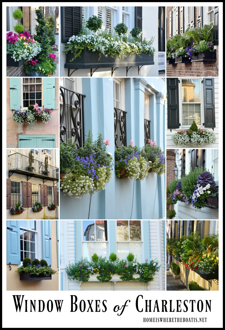 Beautiful and Blooming Window Boxes of Charleston – Home is Where ...