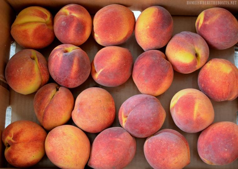 Mac's Pride Big Red Peaches | ©homeiswheretheboatis.net #easy #summer #peach #recipes #desserts