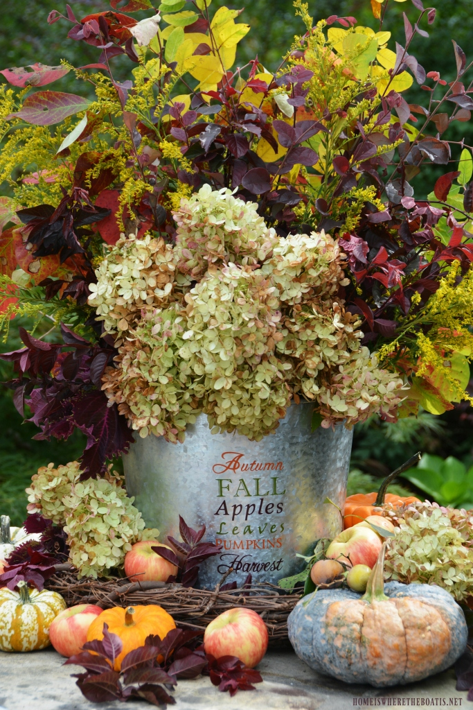 Autumn Harvest Arrangement with flowers, foliage, pumpkins and apples | homeiswheretheboatis.net #fall #hydrangeas #DIY #flowers