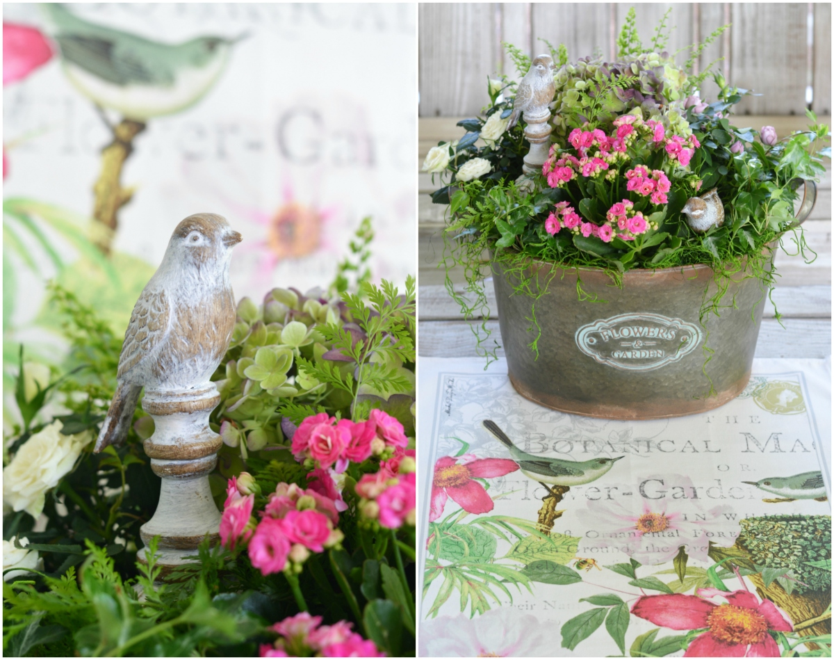 Floral Friday: DIY Indoor Container or Dish Garden