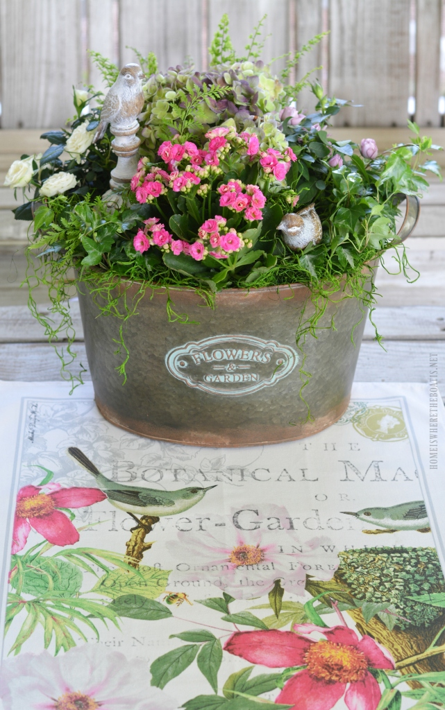 Floral Friday Diy Indoor Container Or Dish Garden Home Is Where