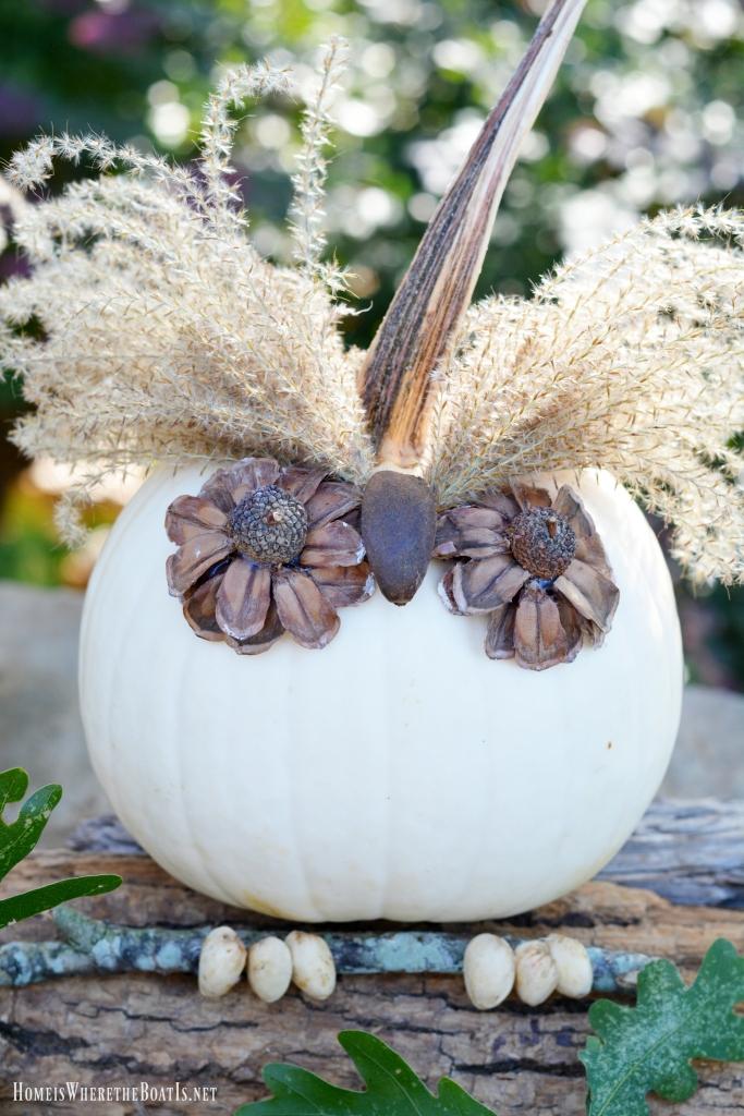 No-Carve Pumpkin Owls! A hoot to make using natural materials! | ©homeiswheretheboatis.net #nocarvepumpkin #owl #fall