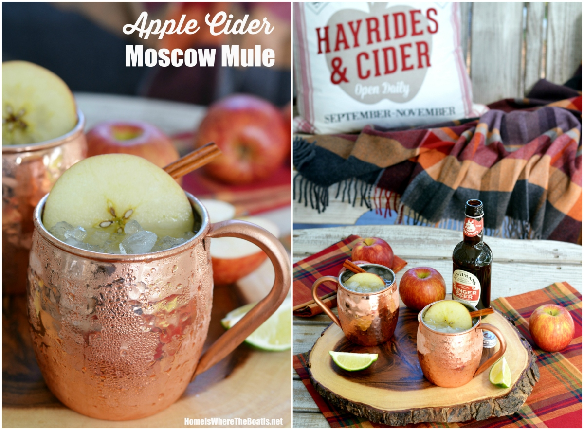 Cheers to Fall: Apple Cider Moscow Mule