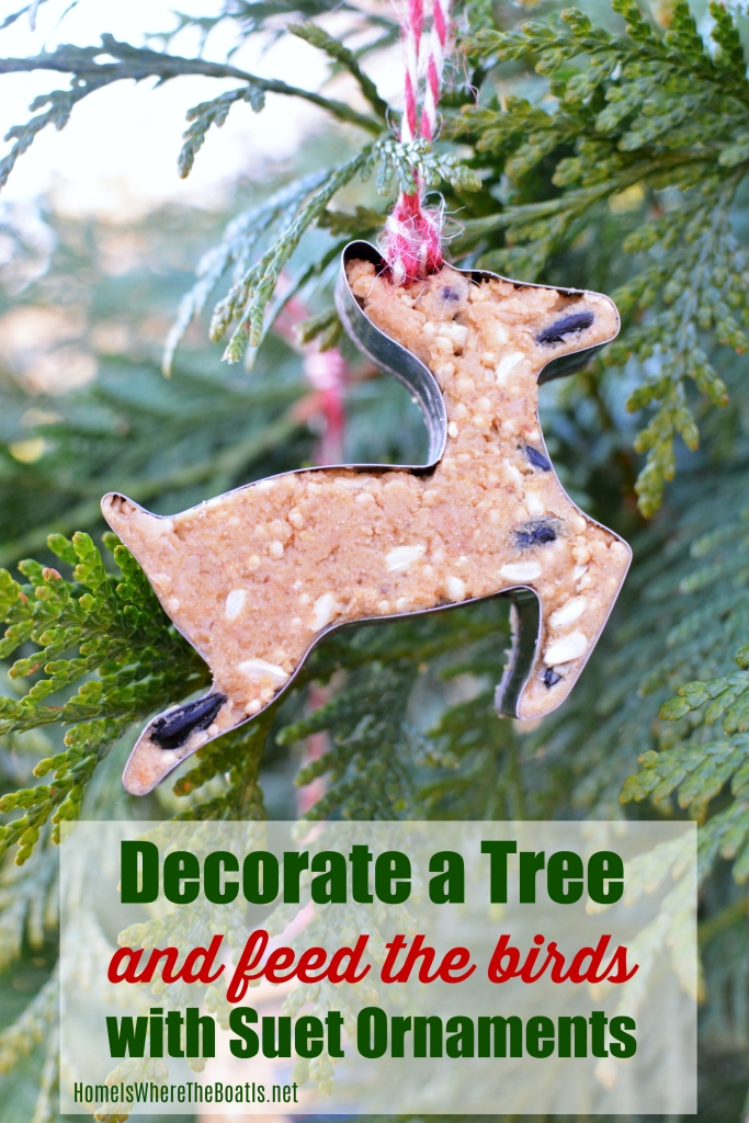 Feed the birds and decorate a tree with suet ornaments! This easy DIY uses cookie cutter ornaments as a fun way to serve up nutritious treats to your backyard birds and help sustain them through the cold, winter months | homeiswheretheboatis.net #birdfeeder #ornaments #DIY #Suet #winter #Christmas #cookiecutter