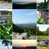 Blue Ridge Mountain Views and Getaway