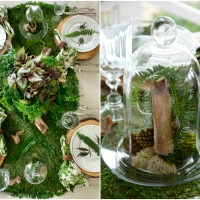 High Country-Inspired Woodland Table and Mossy Dish Garden