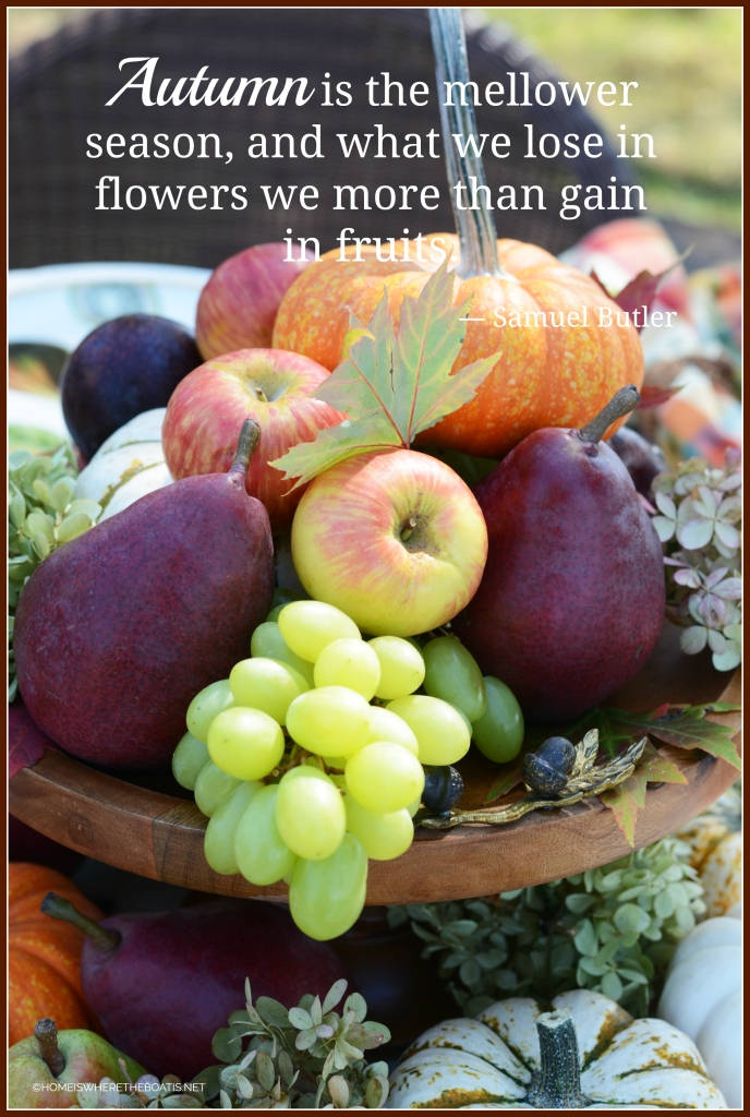 """Autumn is the mellower season, and what we lose in flowers we more than gain in fruits."" ― Samuel Butler 