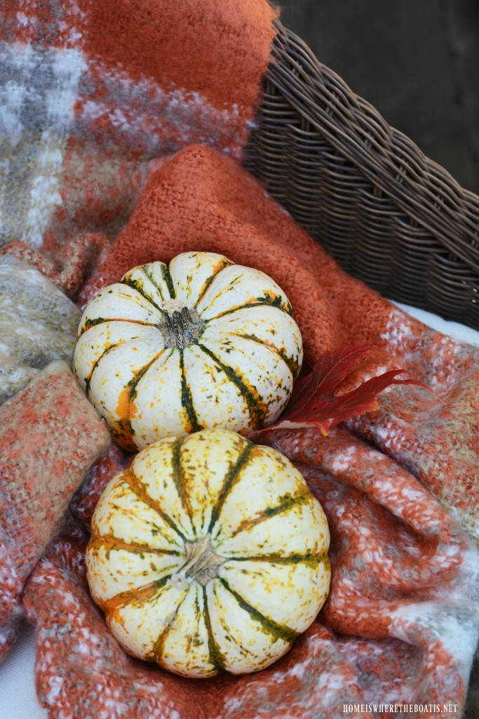 Tiger stripe pumpkins and throw | ©homeiswheretheboatis.net #halloween #tablescapes
