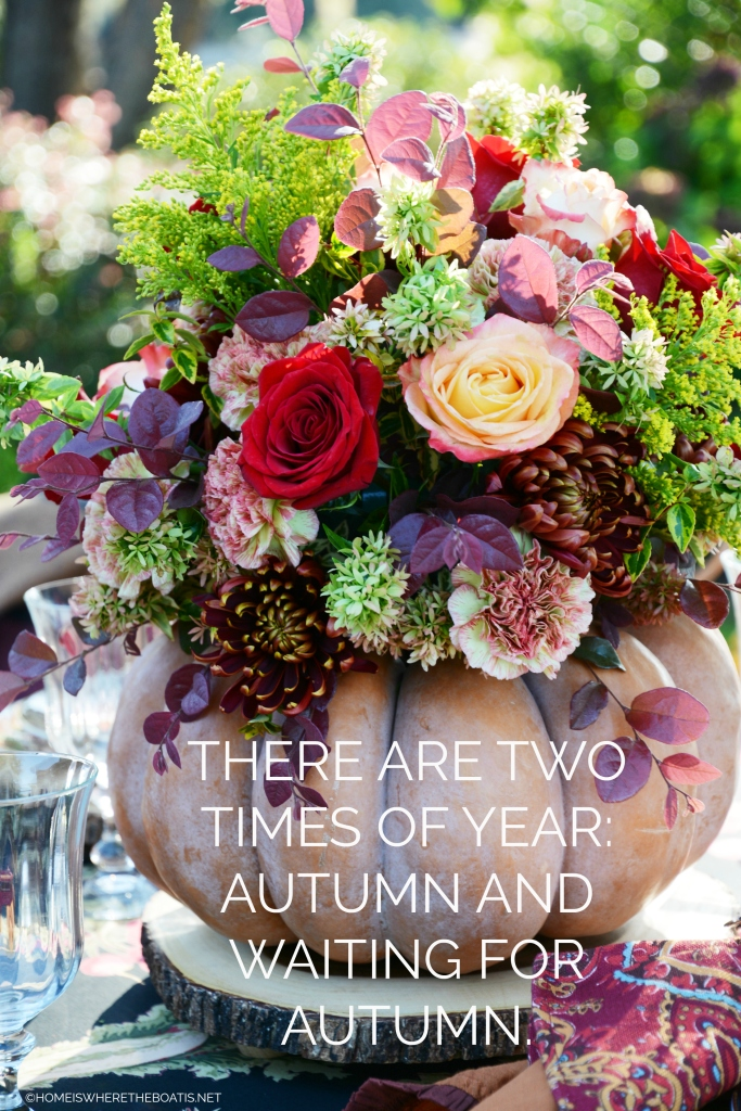 There are two times of the year: Autumn and Waiting for Autumn. | ©homeiswheretheboatis.net #fall #quote #pumpkin