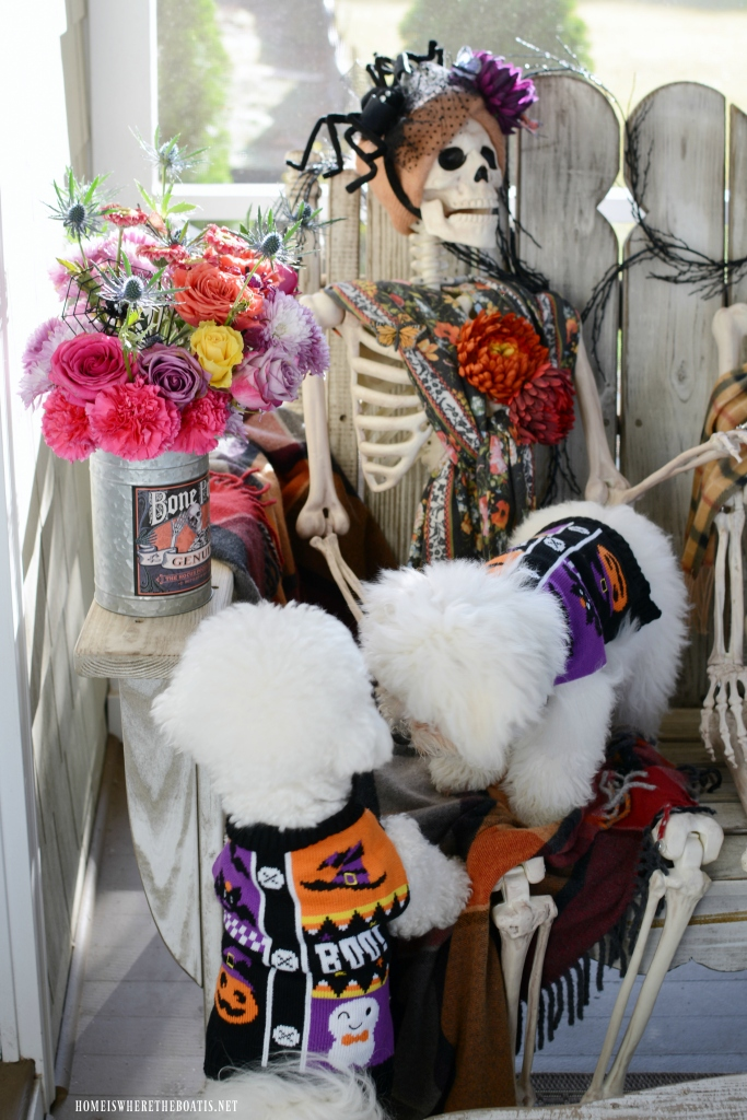 Skeletons on the Porch | ©homeiswheretheboatis.net #Halloween #skeleton #porch #humerus